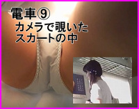 [電車⑨] カメラで覗いたスカートの中身 パンチラ(5分00秒 1920×1080px)