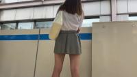 【動画】超絶ミニのグレー達